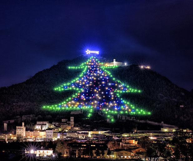 Cây thông Noel trên đồi lớn nhất thế giới