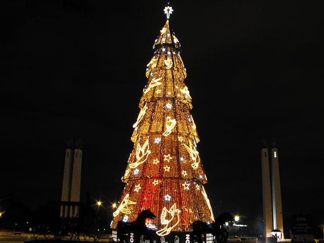Cây thông Noel lớn nhất châu Âu