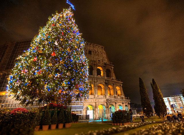 Cây thông Noel đẹp thế giới