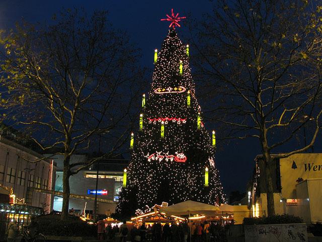 Cây thông Noel tự nhiên lớn nhất thế giới